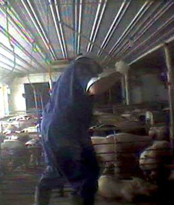 uncovering abuses. And some of the images of animal slaughter hasn't passed TV censors either.